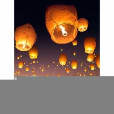 10 stuks voordeel wensballonnen 50 x 100 cm
