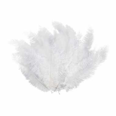 12 lange witte veren
