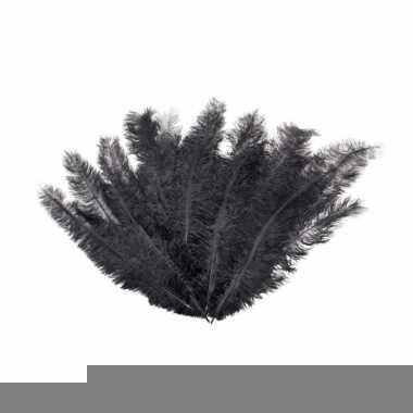 12 lange zwarte veren