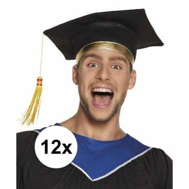 12x afstudeerhoedje / geslaagd hoedje voor volwassenen