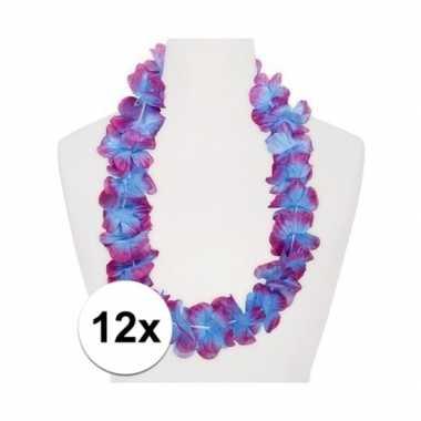 12x hawaii slinger paars/blauw