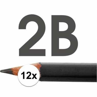 12x hb potloden voor volwassenen hardheid 2b