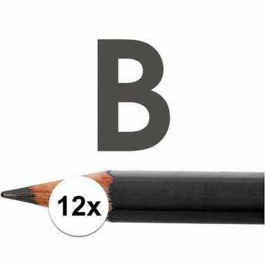 12x hb potloden voor volwassenen hardheid b