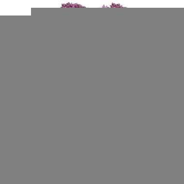 12x roze/paarse sierui kunstbloemen 70 cm