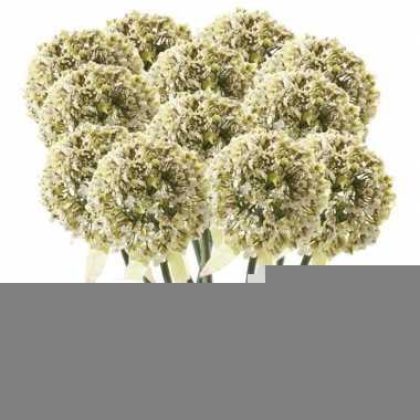 12x witte sierui kunstbloemen 70 cm