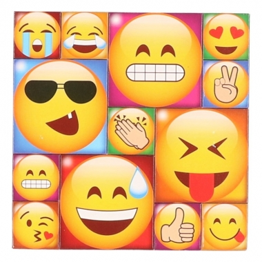 13x emoji smiley memo magneten type 3