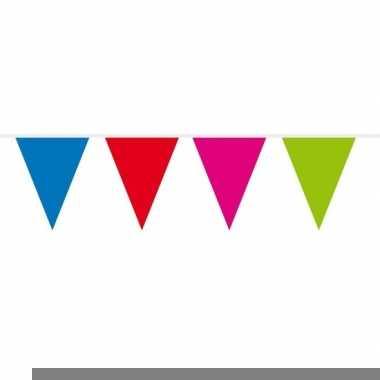 1x mini vlaggenlijn / slinger multi colour 300 cm