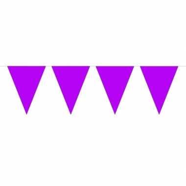 1x mini vlaggenlijn / slinger paars 300 cm