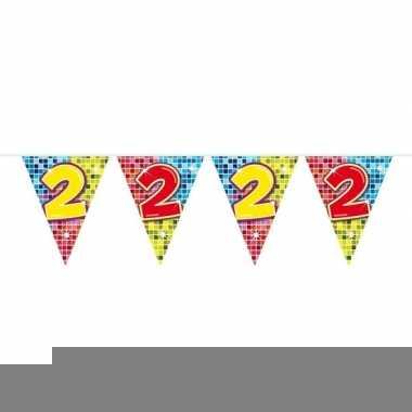 1x mini vlaggenlijn / slinger verjaardag versiering 2 jaar