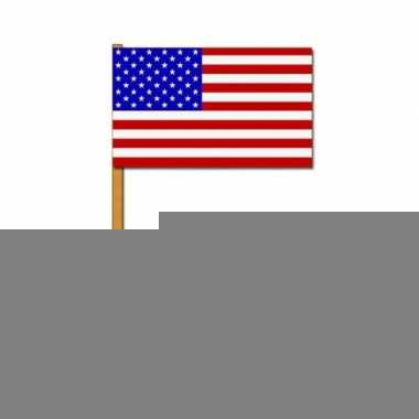 2 zwaaivlaggetjes amerika