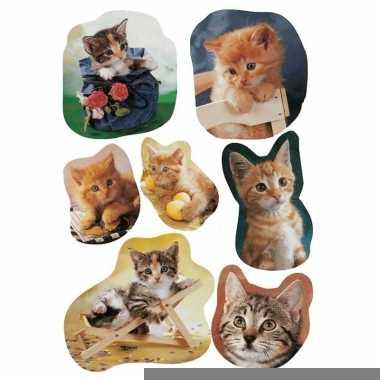 21x katten/poezen dieren stickers
