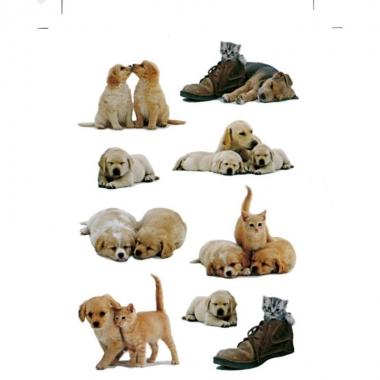 27x honden/puppy en katten/poezen dieren stickers