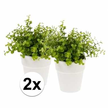 2x kunstplant eucalyptus groen in witte pot 22 cm