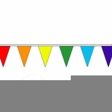 3x luxe regenboog vlaggenlijn voor binnen en buiten