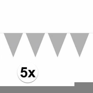 5 stuks zilveren vlaggetjes slinger van 10 meter