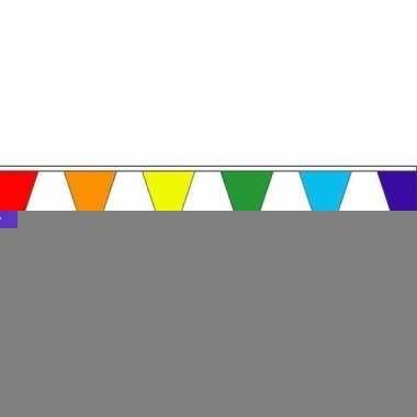 5x luxe regenboog vlaggenlijn voor binnen en buiten
