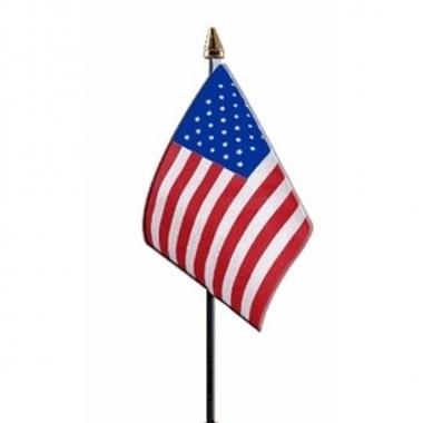 Amerika vlaggetje met stokje