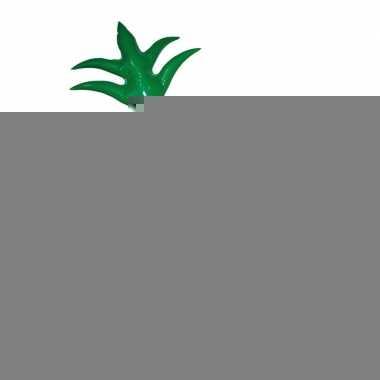 Ananas dranken koeler