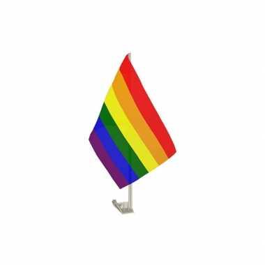 Autovlaggen met regenboogvlag