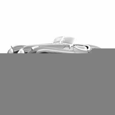 Bburago modelauto jaguar xk 120 zilver