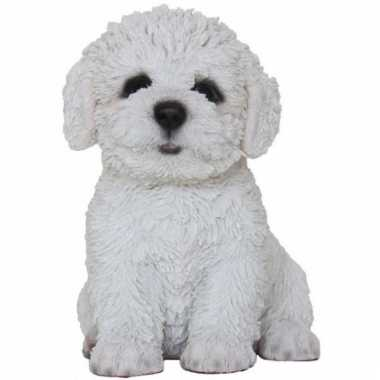 Beeldje bichon frise hondje 15 cm