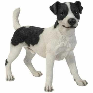 Beeldje jack russel hondjes 35 cm