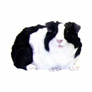 Beeldje langharige zwarte cavia 23 cm