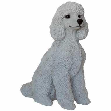 Beeldje witte poedel hondje 32 cm