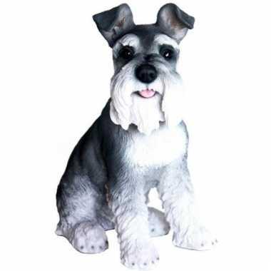 Beeldje zwart/witte schnauzer hondje 33 cm