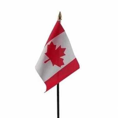 Canada vlaggetje met stokje