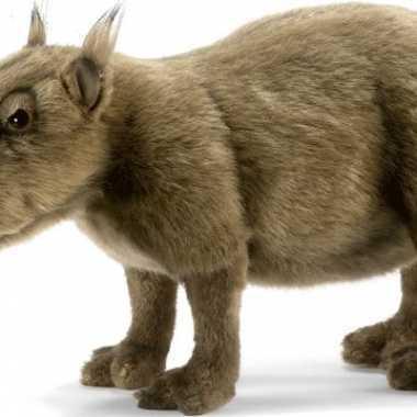 Capibara knuffels van pluche 33 cm