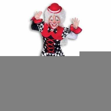 Clown outfit voor meisjes