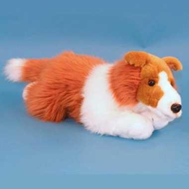 Collie pup pluche knuffel 36 cm