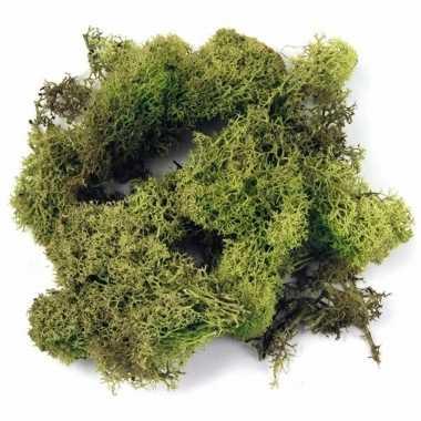 Deco mos lichtgroen 200 gram