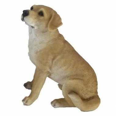 Decoratie dieren beeld blonde labrador hond 22 cm