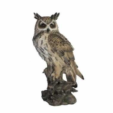 Decoratie dieren beeld oehoe uil vogel 53 cm
