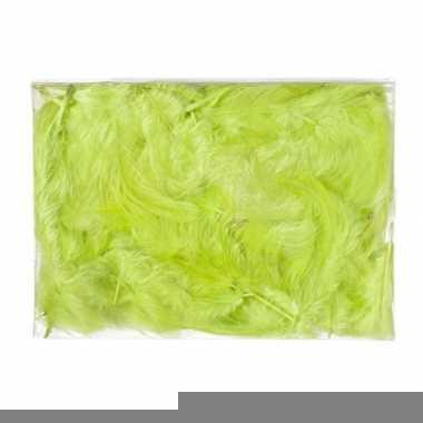 Decoratie dons veren groen 5 gram