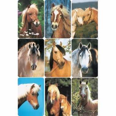 Decoratie paardenhoofden etiketten 3x