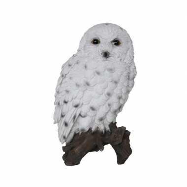 Dieren beeldje van een sneeuwuil op stam 23 cm