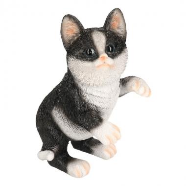 Dierenbeeld kat/poes zwart/wit 20 cm