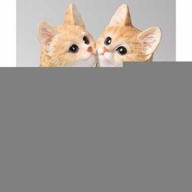 Dierenbeeld katjes/poesjes rood 20 cm