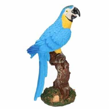 Dierenbeeld papegaai vogel blauw 26 cm woondecoratie