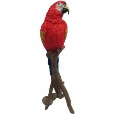 Dierenbeeld rode papegaai op stam 30 cm