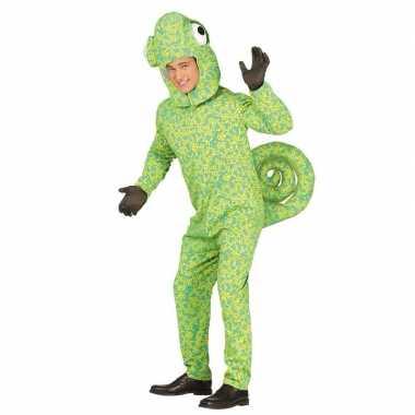 Dierenpak groene kameleon voor volwassenen