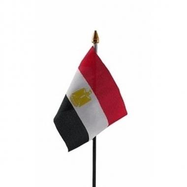 Egypte vlaggetje met stokje