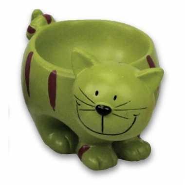 Eierdopje kat/poes groen