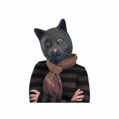 Feest dierenmasker katten