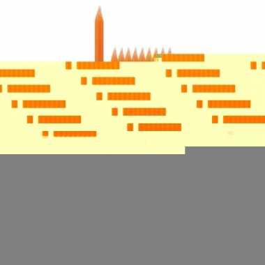 Feest kaarsen oranje 10x
