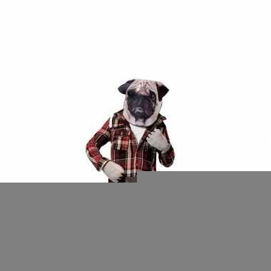 Feest mopshond verkleedset voor volwassenen