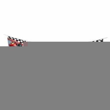 Formule 1 vlaggenlijn 3 meter